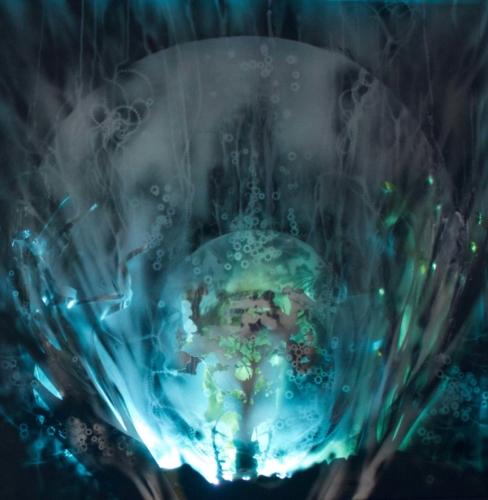 Artêria Carolline Auclair Perle des profondeurs II (Bleu) Boite lumineuse, médiums mixtes 30x30 in 76x76 cm 2016